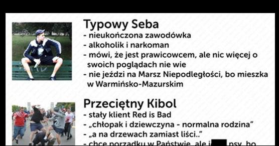 Klasyfikacja polskiej patoli...