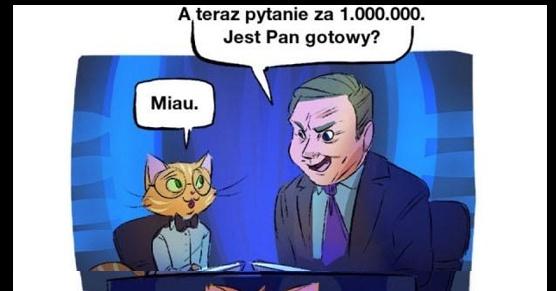 Pytanie za milion do kota