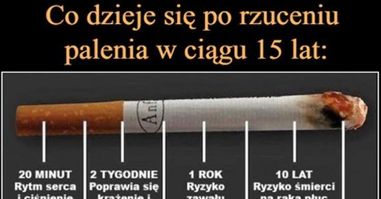 Oto co dzieje się po rzuceniu palenia w ciągu 15 lat