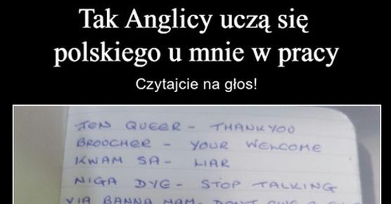 Tak Anglicy uczą się języka polskiego u mnie w pracy...