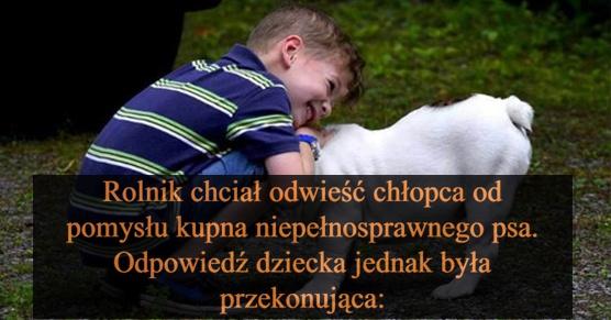 Rolnik chciał odwieść chłopca od pomysłu kupna niepełnosprawnego psa. Jednak odpowiedź dziecka była przekonująca...
