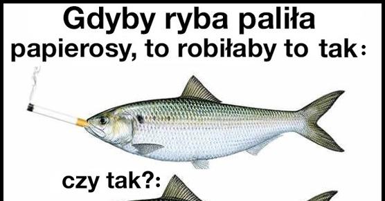 Gdyby ryby paliły papierosy..
