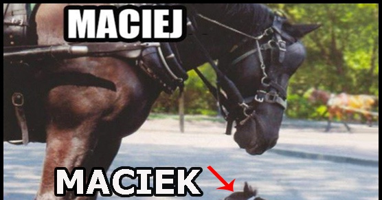 Maciek vs Maciej