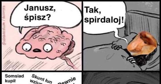 Bezlitosny mózg