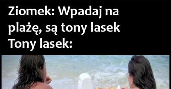 Tony lasek