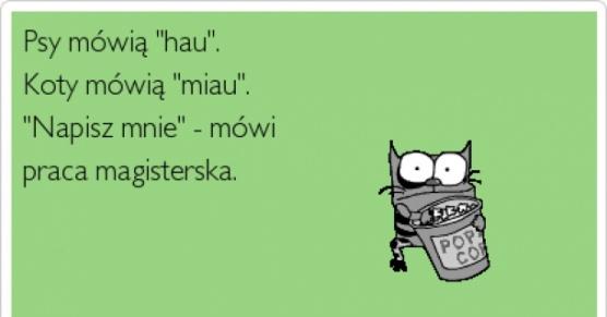 Miauuu, hau