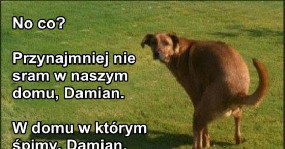 Damian, plz